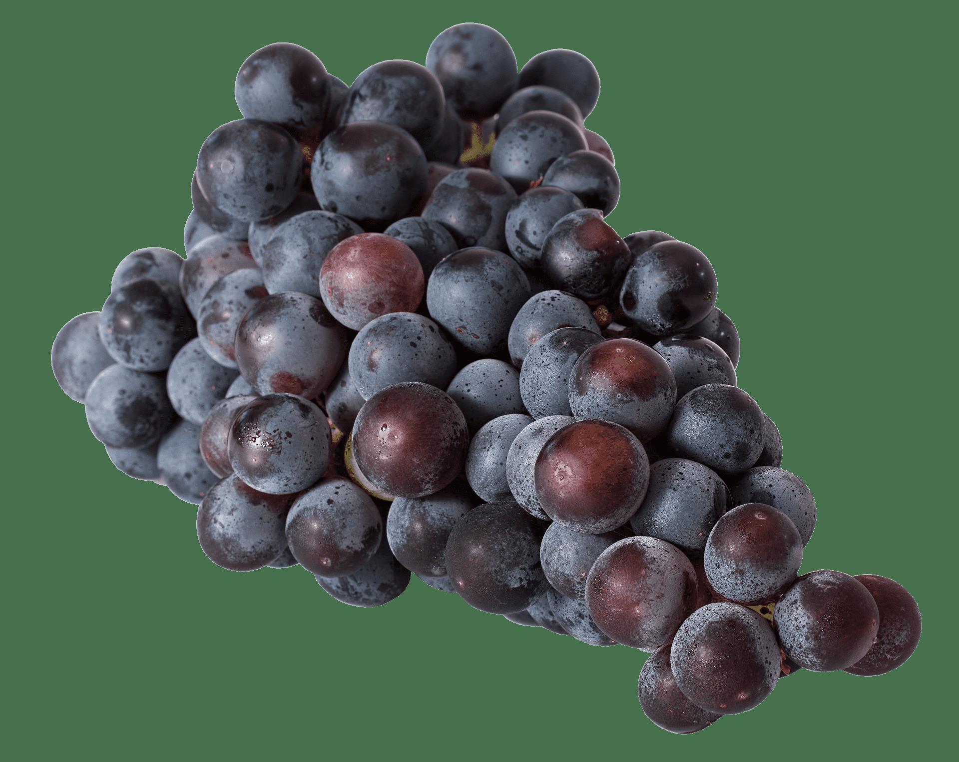 Czerwone winogrono